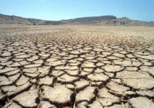 Terra rachada, por falta de água e cozida pelo calor do sol, forma um padrão na Reserva Natural de Popenguine, Senegal. (Foto da ONU / Evan Schneider)
